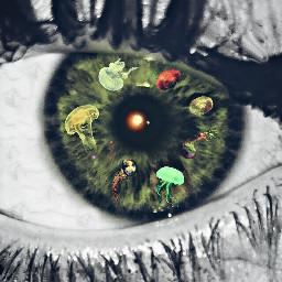 eye medusa colorful oceanintheeye design