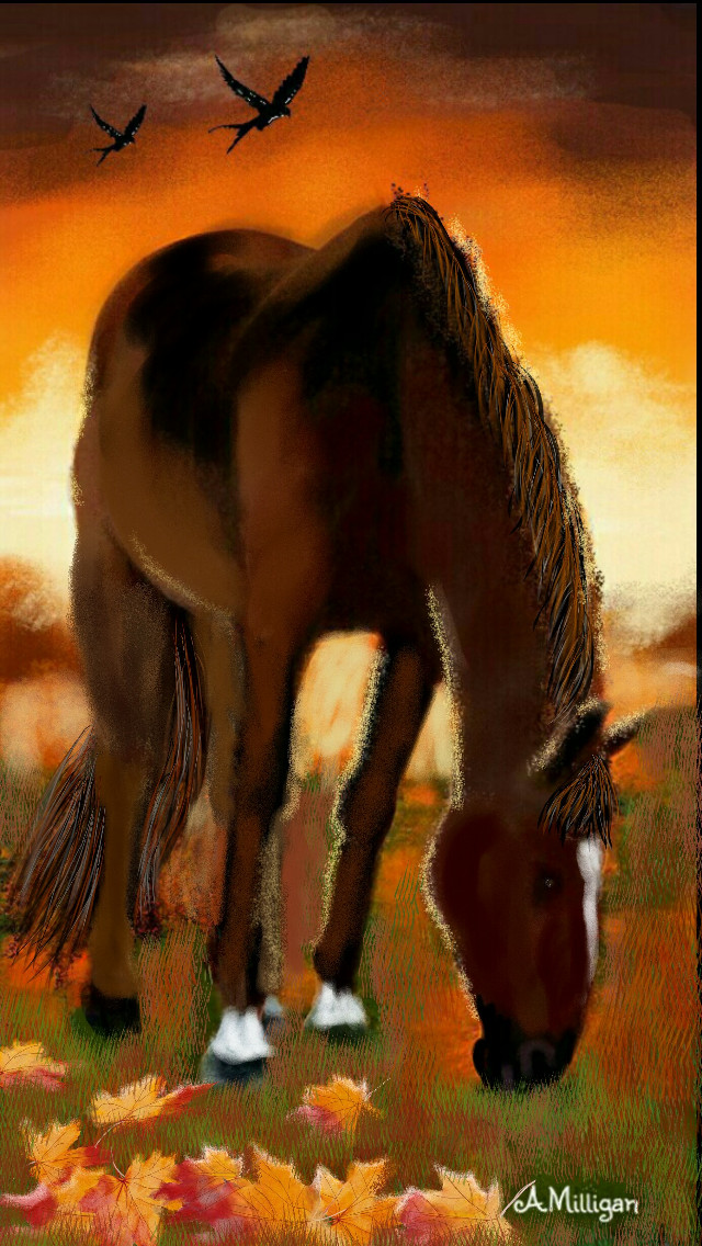"""#wdpautumncolors  """"Beauty in the Autumn sunset""""  My first entry for Autumn colours. 😊   #colorsplash  #colorful  #love  #nature  #petsandanimals  #autumn  #horse  #eveningsky  #draw 😊❤💚🐎"""