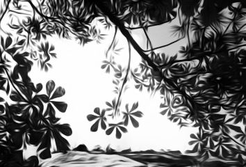 leaves trees blackandwhite oilpainting