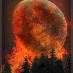 forests forestfire climatechange sadness moon